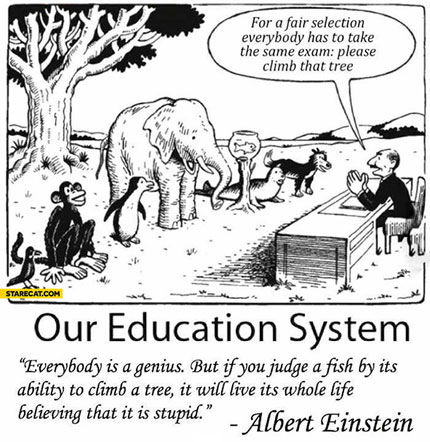 Our Education System